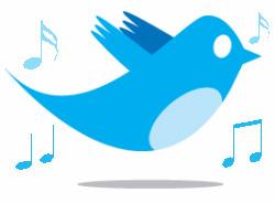 Twitter bird notes